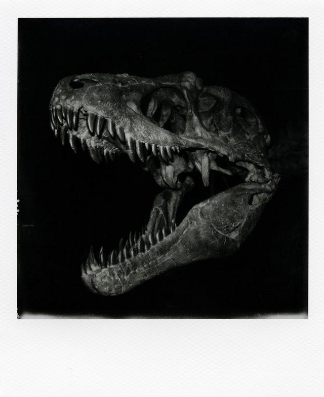 tableau dinosaure